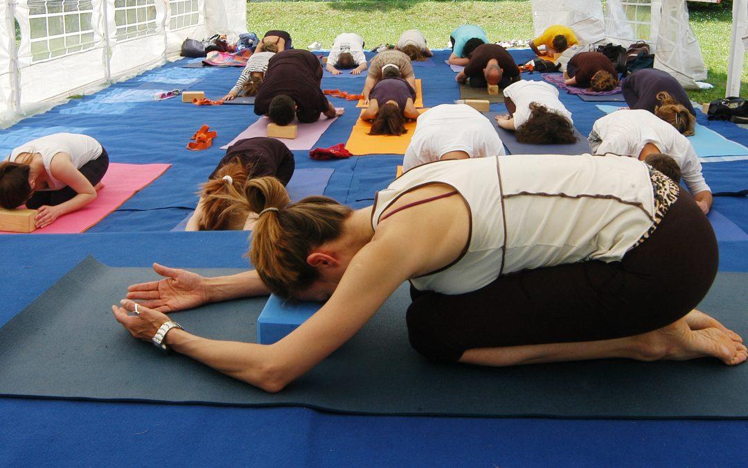 Hatha Yoga – 2 freeclass